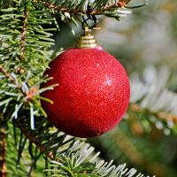 Rote Christbaumkugel