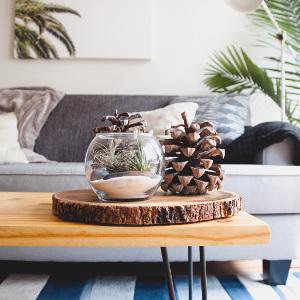 Möbel Trend Naturliebe