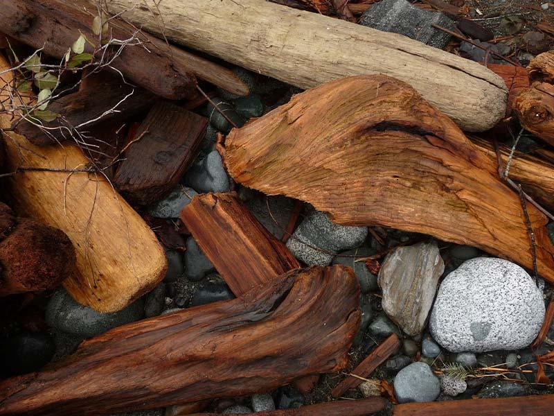 Strandholz zum Dekorieren