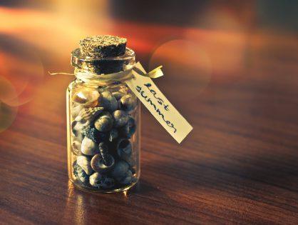 Schöne Dekotipps mit Souvenirs: So holen Sie sich den Urlaub nach Hause