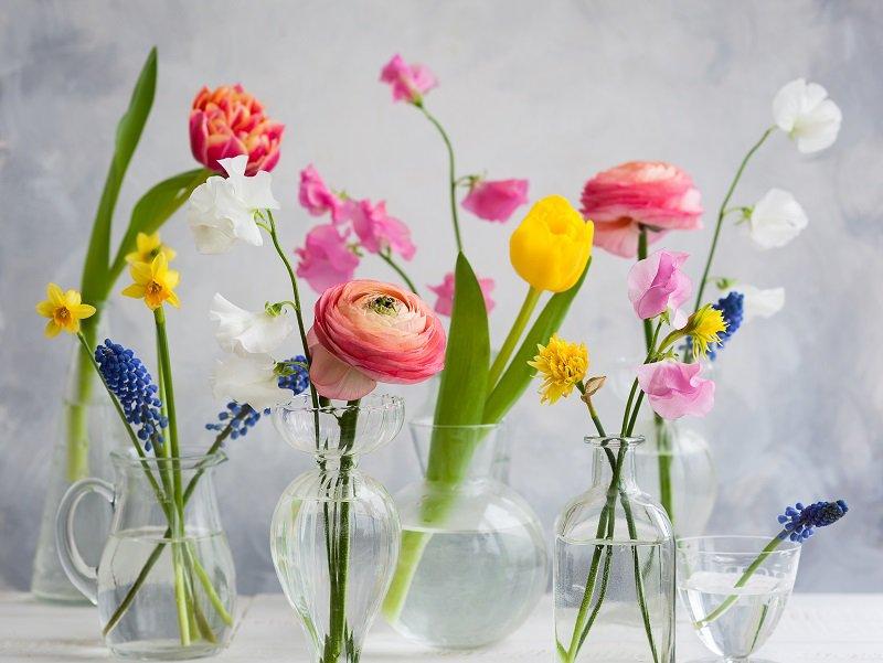 bunte blumen glas vasen