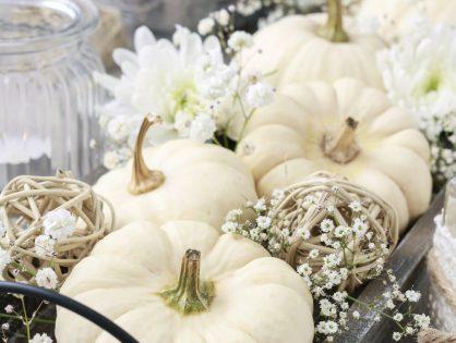 Natürlich dekorieren im Herbst
