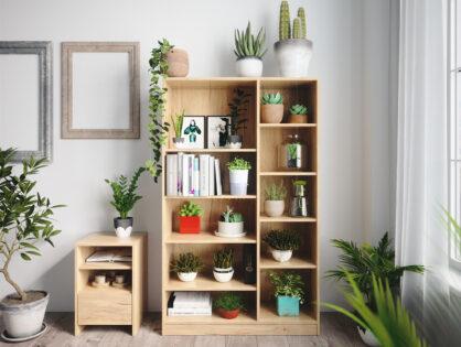 Schön grün: Einrichten mit einem Pflanzenregal