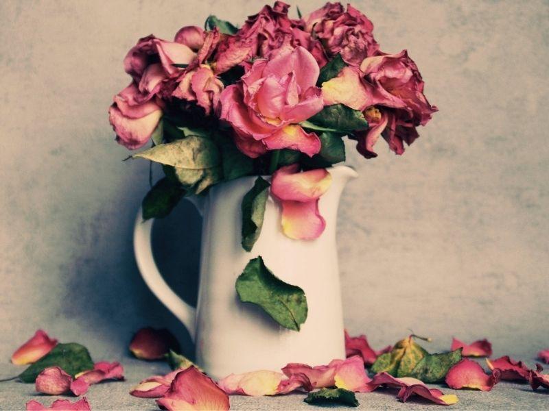 Getrocknete Rosen schön dekoriert